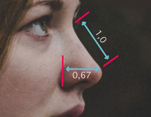 Perfilometria facial